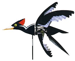 Flying Ivory Billed Wood Pecker - click to Zoom